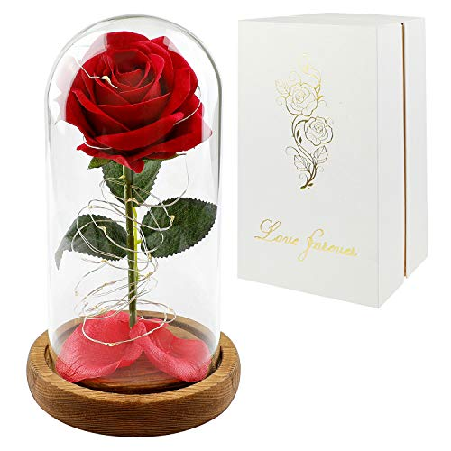 Childom Roses Enchanted Red Silk Rose with Fallen Petals Led Fairy String Lights in A Dome, Gifts...