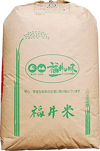 【2年産】玄米 2kg 福井 いちほまれ レターパックプラス (白米に)