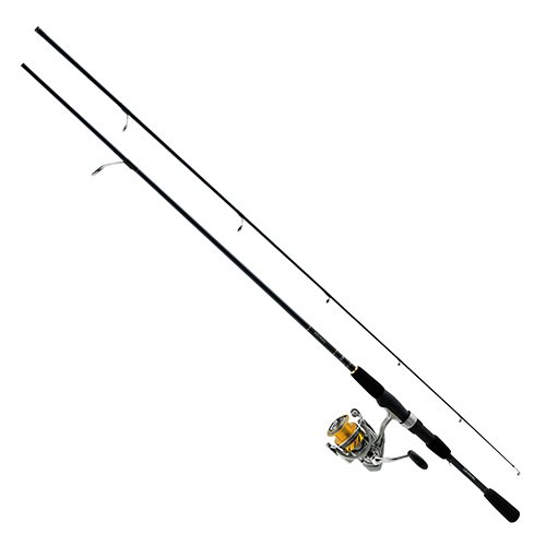 Daiwa REV25-4BI/G662ML Revros Freshwater Spinning Combo, 4Rb+1Rb Bearings, 6'6' Length, 2Piece Rod, Medium/Light Power