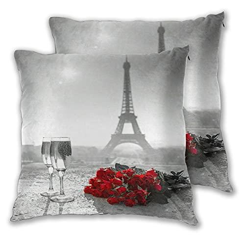 VINISATH Juego de 2 Fundas de Cojín,Copa de Vino Rose Paris Paint,Decorativa Cuadrado Suave Funda de Almohada Sofá Sillas Cama Decoración para Hogar 45x45cm