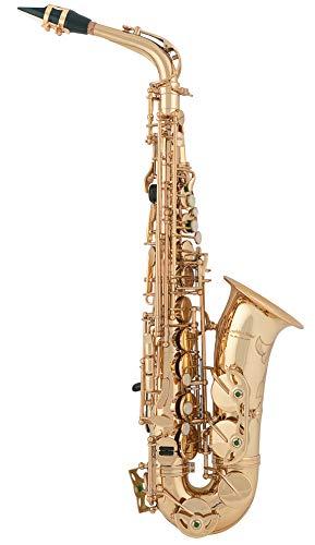 aS Arnolds & Sons ASA-300 Terra Saxophone alto
