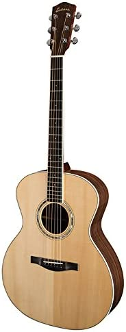 Phoenix Mall Eastman AC422 Grand Chicago Mall Auditorium with Guitar hard case