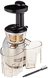 10 Best Low Juicers