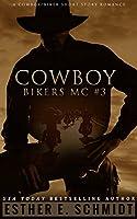 Cowboy Bikers MC #3 (English Edition)