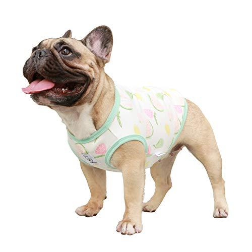 iChoue Haustier-Hunde-Shirt, Weste, ärmellos, Baumwolle, Obstdruck, Pyjama für Französische Bulldogge Mops, XXL, Wassermelone