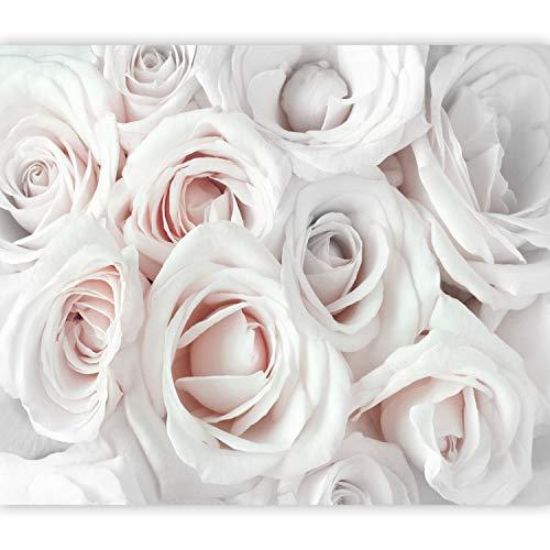 murando Fotomurales Flores Rosa 350x256 cm XXL Papel pintado tejido no tejido Decoración de Pared decorativos Murales moderna Diseno Fotográfico rosa beige blanco b-B-0406-a-c