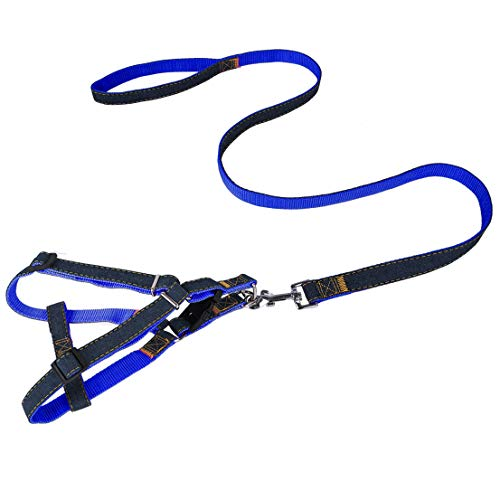 IXIAOPET Dog Leash Harness, Adjustable and Heavy Duty Durable Denim Dog Leash Collar for Training Walking Running, Best for Medium/Small Dog (Blue)