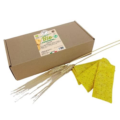 Galletas con cúrcuma orgánica, paquete de 6x100g, Made Italy - Bio - Pan, Vegano, Producto artesanal, Sin aceite de palma