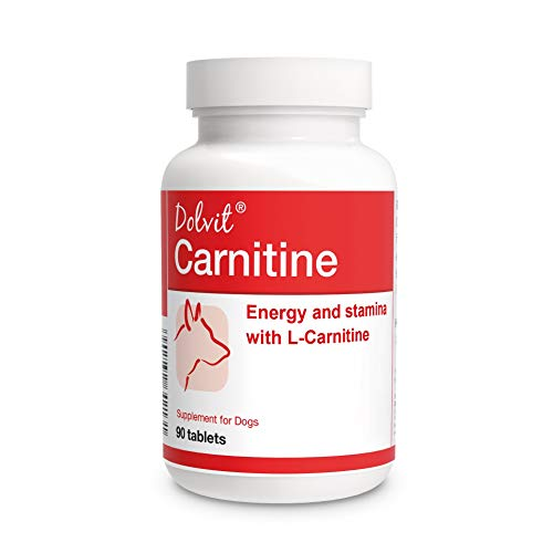 Dolvit Carnitine - Energy Stamina Weight Management well selected B Vitamins Minerals Amino acids with L-Carnitine 90 tablets for DOGS
