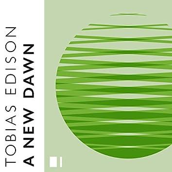 A New Dawn (Spring)