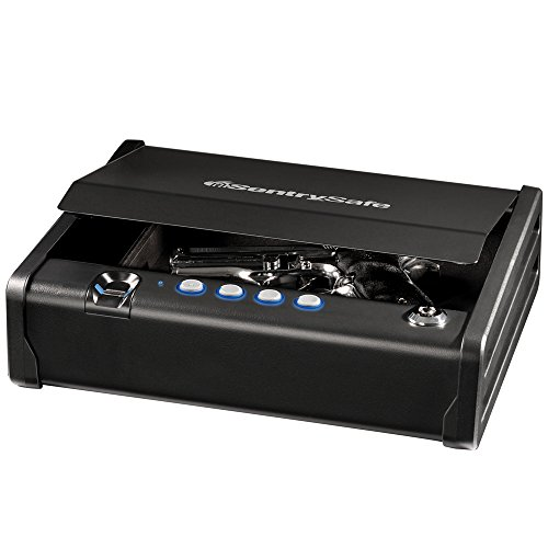 SentrySafe QAP1BE Gun Safe with Biometric Lock, Single Capacity