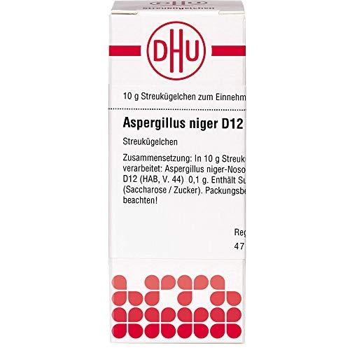 DHU Aspergillus niger D12 Streukügelchen, 10 g Globuli