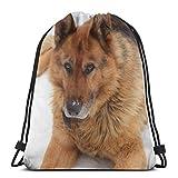 Perro lindo cachorro blanco animal doméstico cachorro personalizado con cordón bolsas de hombro bolsa de gimnasio, mochila de viaje, gimnasio ligero para hombre y mujer, 16 x 14 pulgadas