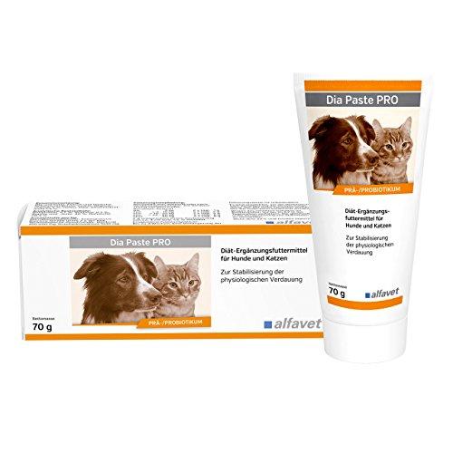 Dia Paste PRO / Prä-/Probiotikum/ leckere Paste mit Enterococcus faecium zur längerer Gabe bei und nach Durchfall
