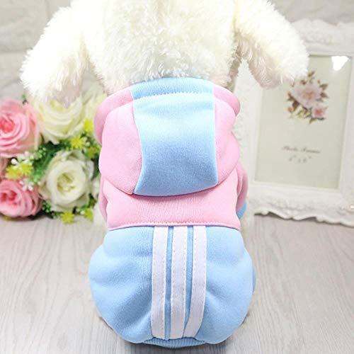 Xinger Hondenkleding Winter Soft Hoodie Chihuahua-kleding Warme hondenkleding Winter Hondenkleding voor kleine vacht, Hemelsblauw, XL voor 4,25-6 kg