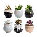 Dsaren Set di 6 Vaso da Fiori in Ceramica Mini Vasi Piante Grasse Cactus Carini Vasi Conte...