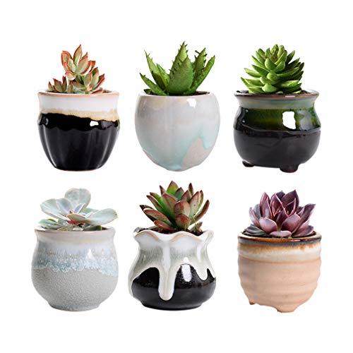 Dsaren 6 Pcs Ceramic Succulent Plant Pots 6cm Cactus Flower Pot Small Planter Containers with Holes for Home Garden Office Decoration (6 PCS)