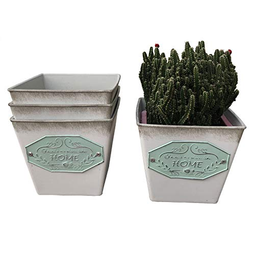 Ashley ZC Pack of 3 Vintage Succulent Cactus Planters,Rustic Country Style Square Plastic Flower Pot Container - Indoor or Outdoor Decor