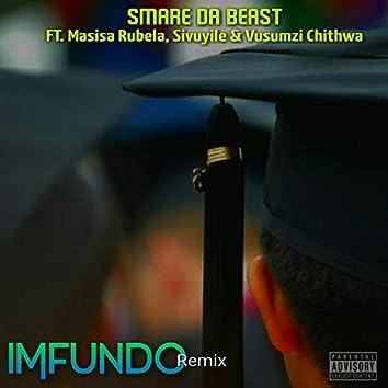 Imfundo (Remix)
