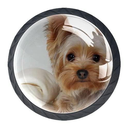 Tirador de manijas de cajón Perillas decorativas del gabinete del cajón Manija del cajón del tocador 4 piezas,yorkshire terrier acostado tela cara perro