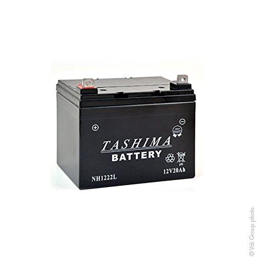Greenstar 15268 Batterie 100% etanche + a gauche (nh1222gl), Noir
