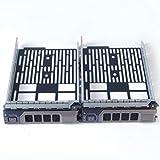 Heretom Paquete de 2-3,5' KG1CH SAS/SATA Bandeja de Disco Duro Caddie 0KG1CH Caddy Tray Sled Compatible para DELL T640 T440 R730 R630 R530 R510 R430 R410 T430 R330 MD1400 MD3200