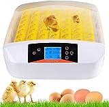 CARLAMPCR Vollautomatische Brutmaschine 56 Eier Brutapparat Flächenbrüter Inkubator Brutkasten,Effizienter LED Beleuchtung Feuchtigkeitsfest Energiesparend Kühltechnologie