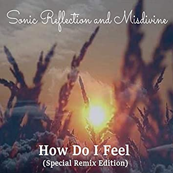 How Do I Feel (Special Remix Edition)
