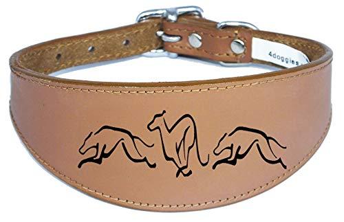 4DOGGIES cane collare in pelle Greyhound Whippet collare imbottito di telefono corsa Hound