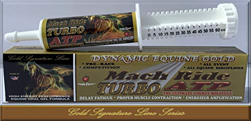 MACH Ride Turbo ATP- Equine Professional High Performance Grade, Scientific, Unharnessed, Pure Power Packing, Sustained Adrenalin Pumping Kinetic Energy * Pre Race * Competition * Event Gel Paste.