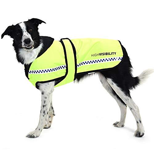 Equisafety ad Alta visibilità Riflettente Trapuntato per Cani, X-Large