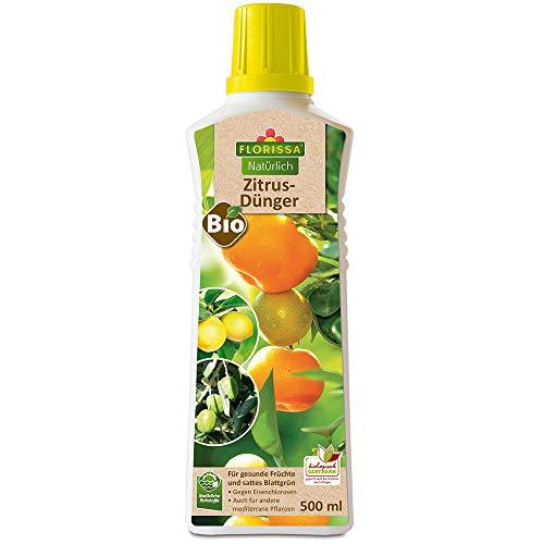 Bio Zitrusdünger für alle Zitrusarten und mediterrane Pflanzen | sattes Grün und intensive Fruchtbildung | vegan, aus rein pflanzlichen Rohstoffen | biologisch GÄRTNERN Gütesiegel