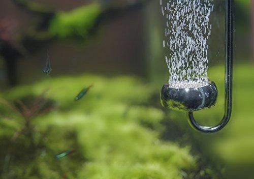 fibst CO2 Diffuser for Aquarium, Excellent CO2 Solubility Ensuring Vigorous Plants (30Dx350L)