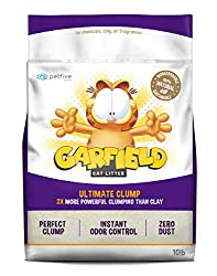 garfield cat tiny