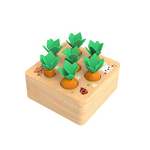 XIAPIA Holzspielzeug ab 1 Jahr | Baby Motorik Spielzeug für 12 Monate Jungen und Mädchen | Montessori Sortierspiel Holzpuzzle Karottenernte | Lernspielzeug für Kinder als Geburtztag Geschenk