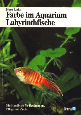 Farbe im Aquarium - Labyrinthfische - Ein Handbuch für Bestimmung, Pflege und Zucht