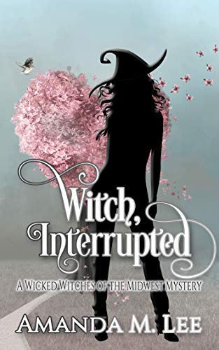 Witch, Interrupted (Wicked Witches of the Midwest Book 13)