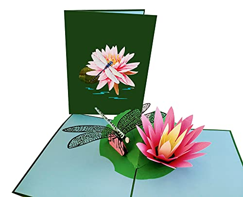 iGifts And Cards Dragonfly 3D Pop Up Greeting Card – Animal, Park, Water, Fly - Folds Flat - Fun, Birthdays, Just Because, Love, Special Days