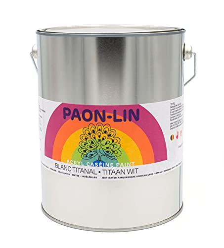 PAON-LIN – 1 bote de pintura blanca – Titanio ultra mate – Pintura opaca y duradera – 5 kg