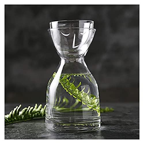 Hervidor de vidrio creativo 1 olla 1 taza botella de vidrio para el hogar hervidor de 800 ml con tapa (color transparente)