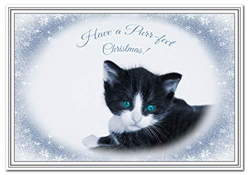 CAT Christmas Cards Unique Range Cats Kitten Girlfriend Boyfriend Kids Parents (Black and White Kitten Xmas Card)