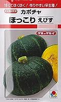 かぼちゃ 種 【 ほっこりえびす 】 種子 小袋(約10粒)