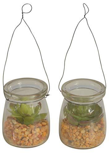 Chiccie Kunstvetplanten, 2 stuks, in glazen potten, 7 cm, om op te hangen, kunstplanten, kunstbloemen, kunstmatige vetplanten