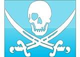 White Pirate Skull & Swords Vinyl Decal Transfer - Jolly Roger Bumper Stickers - Beach Decal