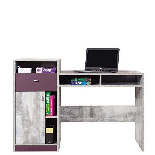 Schreibtisch Zoom ZM06 Arbeitstisch, Kinderschreibtisch, Jugendschreibtisch mit Tür und Schublade