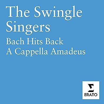 Bach Hits Back - A Cappella Amadeus