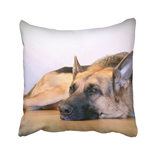 Tarolo Decorative Cute Design Standard Print Cute Pet Doggy Shepherd Dog DIY Pillowcases Protector Gift for Kids Size 16x16 inches(40x40cm) One Sided