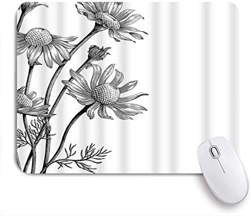 Dekoratives Gaming-Mauspad,Kamille Blume Hand gezeichnet Gänseblümchen botanische Blüte Natur Bleistift zeichnen,Bürocomputer-Mausmatte mit rutschfester Gummibasis