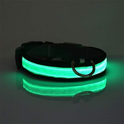 Haustier Hundehalsband LED Luminous Flashing Light Halsband Glow Halskette Nylon Hund Zubehör, für kleine Hündchen, grün, XL