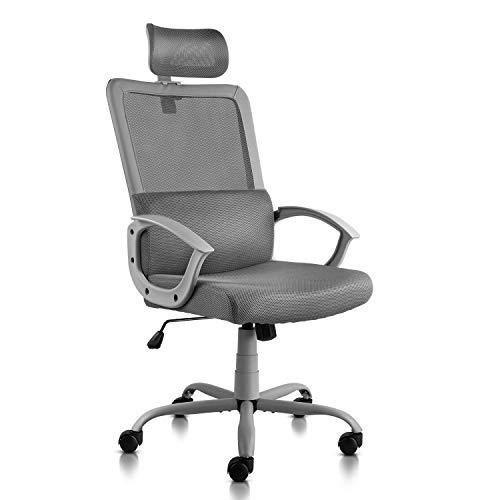 Ergonomic Office Chair Adjustable Headrest Mesh Office Chair Office Desk Chair Computer Task Chair (Black)